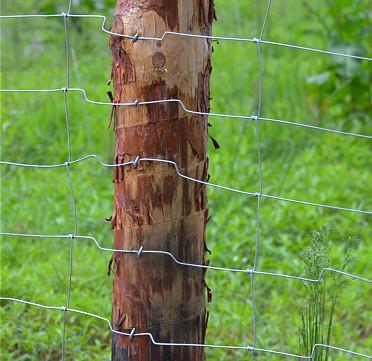 Montaż siatki leśnej do słupków metalowych